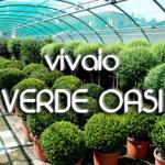 verde_oasi