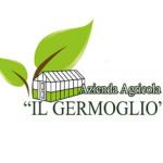 il_germoglio